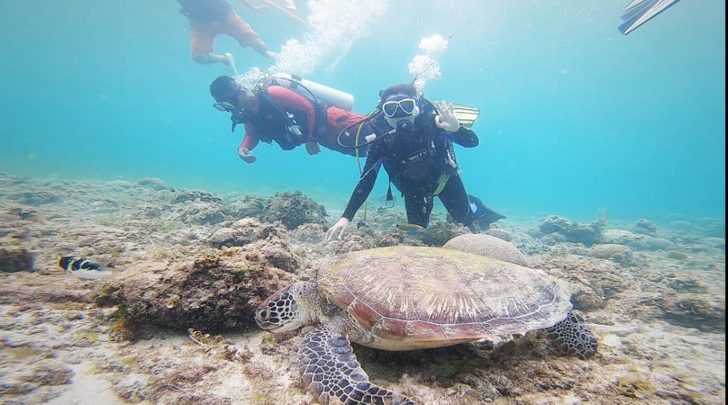 Scuba diving in Moalboal, Cebu